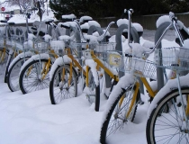 Bicycles in the snow at the University of Montana