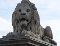 Budapest Chain Bridge lion