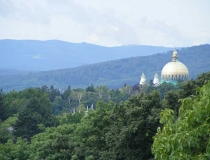 Viennese hills