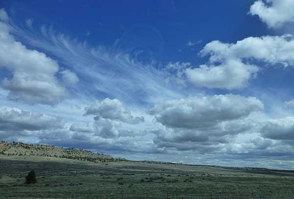Big Sky State