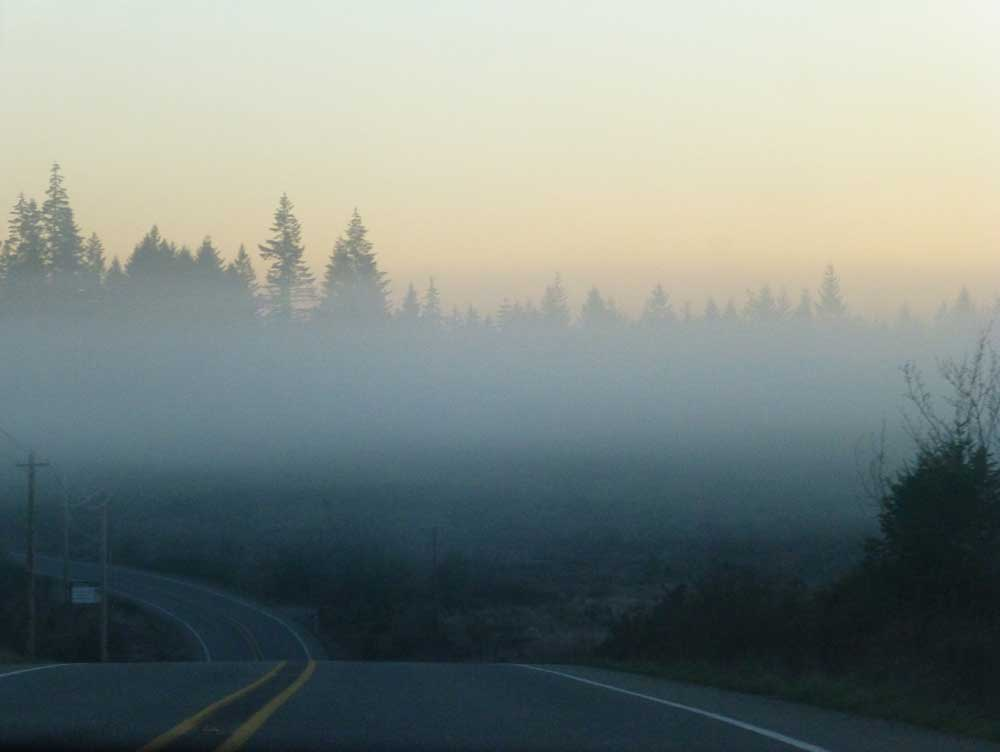 Driving around Puget Sound in the misty dawn